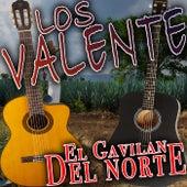 El Gavilan Del Norte de Valente