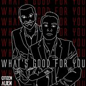 What's Good for You by Citizen Alien