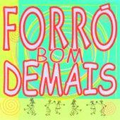Forró Bom Demais von Various Artists