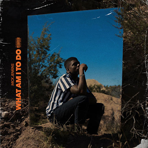 What Am I to Do by Mick Jenkins