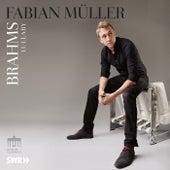 Brahms: Lullaby (Guten Abend, gut' Nacht) by Fabian Müller