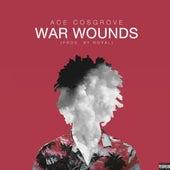 War Wounds de Ace Cosgrove