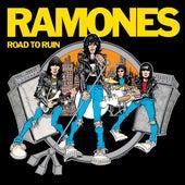 Sheena Is A Punk Rocker (Live at The Palladium, New York, NY 12/31/79) by The Ramones