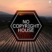 No Copyright House by Various Artists