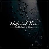 15 Rainfall Tracks from Nature: Relaxing White Noise for Sleep by Rain for Deep Sleep, Rainfall, The Rain Library
