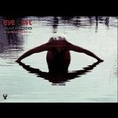 Eye 2 Eye Live In Madrid by Alan Parsons