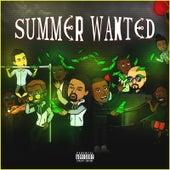 Summer Wanted de Various Artists