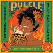 Pulelê (Monkey Marc Mix) von Monkey Jhayam