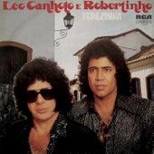 Terezinha von Léo Canhoto e Robertinho