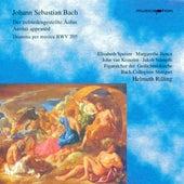 Bach, J.S.: Zufriedengestellte Aolus (Der) / Keyboard Concerto, Bwv 1054 de Various Artists