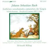 Bach, J.S.: Entfliehet, Verschwindet, Entweichet, Ihr Sorgen / Concerto for Oboe and Violin in D Minor de Various Artists