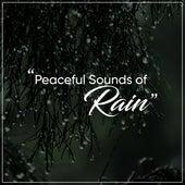 18 Sounds of Rainfall for Deep Sleep and Relaxation by Rain for Deep Sleep, Rainfall, The Rain Library