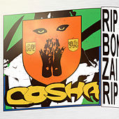 R.I.P Bonzai by Cosha