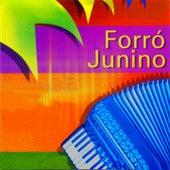 Forró Junino von Various Artists
