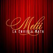 La Envidia Mata by Melii
