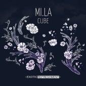Cube von Mila