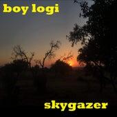 Skygazer de Boy Logi