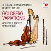 Goldberg Variations, BWV 988, Arr. for Septet by Heribert Breuer/Variatio 29 by Goldberg-Septett