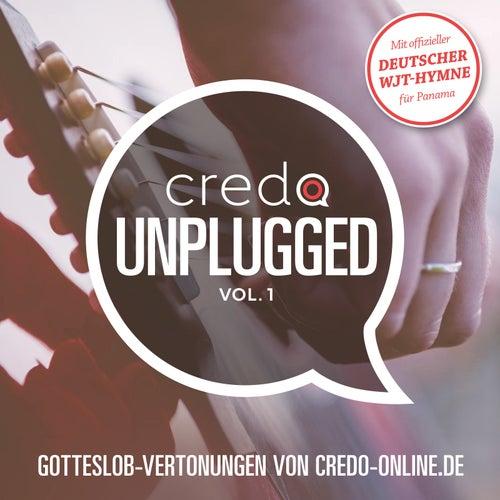 Credo Unplugged, Vol. 1 von CredoArtists