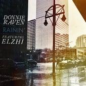 Rainin' (feat. Elzhi) by Donnie Raven
