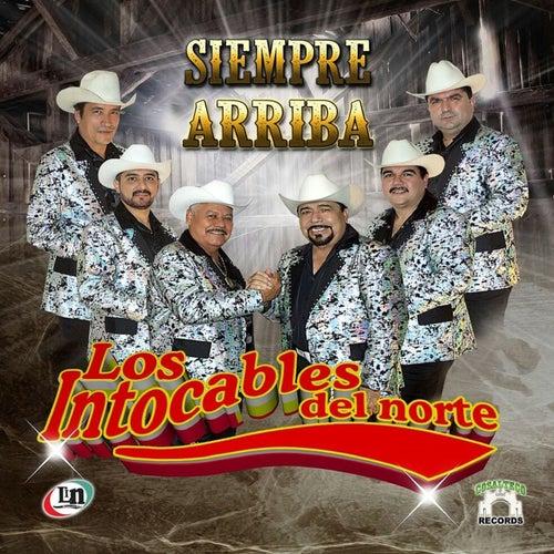 Siempre Arriba by Los Intocables Del Norte