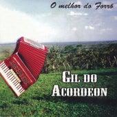 O Melhor do Forró von Gil do Acordeon