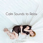 Calm Sounds to Relax by Sleep Sound Library