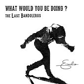 What Would You Be Doing? de The Last Bandoleros