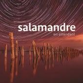 En Attendant von Salamandre