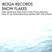 Snow Flakes by Various Artists