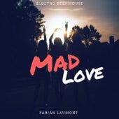 Mad Love (Electro Deep House) von Fabian Laumont