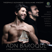 ADN Baroque by Theophile Alexandre