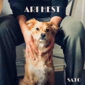 Sato von Ari Hest