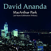 MacArthur Park (40 Years Celebration Tribute) by David Ananda