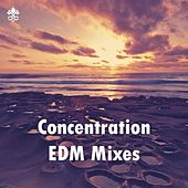 Concentration EDM Mixes by Various Artists