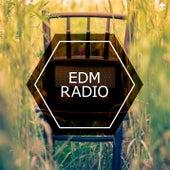 EDM Radio by Various Artists