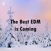 The Best EDM is Coming de Various Artists