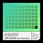 No Time for Hulk (Camelphat Re-Fix - Erik Hagleton 2018 Vocal Edit) de DJ Wady