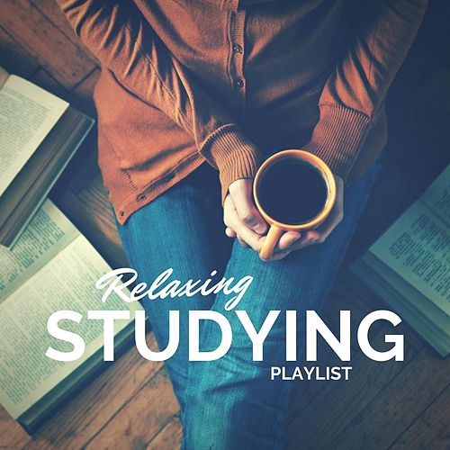 Relaxing Studying Playlist by Various Artists
