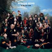 A Better Life de Spring King