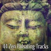 44 Zen Pulsating Tracks von Massage Therapy Music