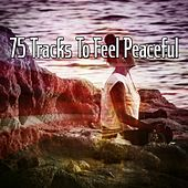 75 Tracks To Feel Peaceful de Zen Meditation and Natural White Noise and New Age Deep Massage