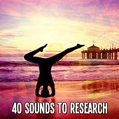 40 Sounds To Research von Lullabies for Deep Meditation