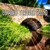 66 Relief Through Sound von Entspannungsmusik