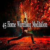 45 Home Warming Meditation de Nature Sounds Artists