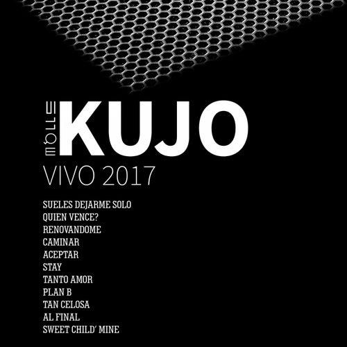 Vivo 2017 de Various Artists