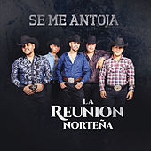 Se Me Antoja by La Reunion Norteña