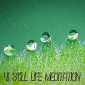 41 Still Life Meditation von Massage Therapy Music
