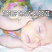 71 Relief Through Ambience de White Noise Babies