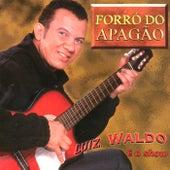 Forró do Apagão de Luis Waldo